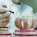 Услуги паразитологической лаборатории